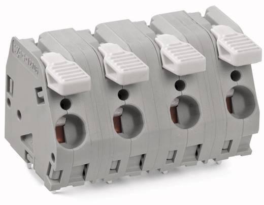 Federkraftklemmblock 6.00 mm² Polzahl 4 2706-304 WAGO Grau 25 St.