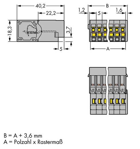 WAGO Buchsengehäuse-Kabel 769 Polzahl Gesamt 5 Rastermaß: 5 mm 769-605 50 St.