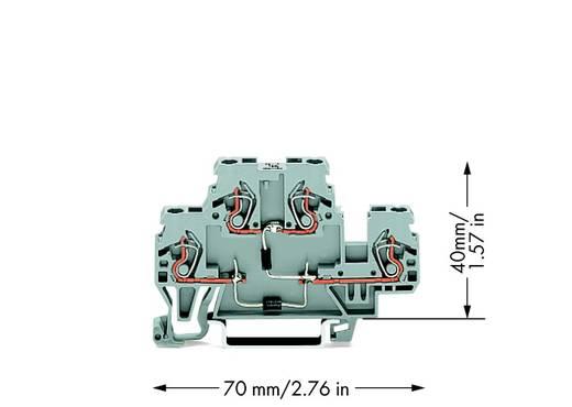 Doppelstock-Diodenklemme 5 mm Zugfeder Belegung: L Grau WAGO 870-541/281-492 50 St.