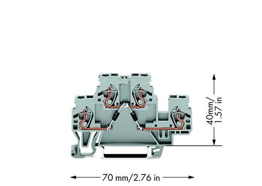 Doppelstock-Diodenklemme 5 mm Zugfeder Belegung: L Grau WAGO 870-541/281-489 50 St.