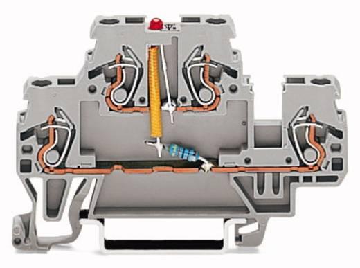 Doppelstock-LED-Klemme 5 mm Zugfeder Belegung: L Grau WAGO 870-543/281-413 50 St.