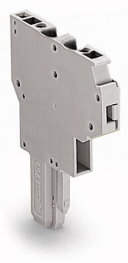 Federleiste 5 mm Zugfeder Belegung: L Grau WAGO 769-121 100 St.