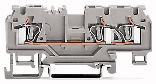 Durchgangsklemme 5 mm Zugfeder Orange WAGO 880-662/999-940 50 St.