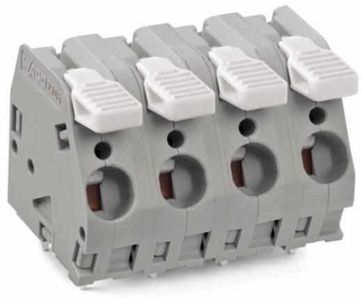 Federkraftklemmblock 6.00 mm² Polzahl 4 WAGO Lichtgrau 30 St.