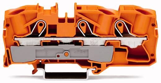 Durchgangsklemme 12 mm Zugfeder Orange WAGO 2016-1302 20 St.