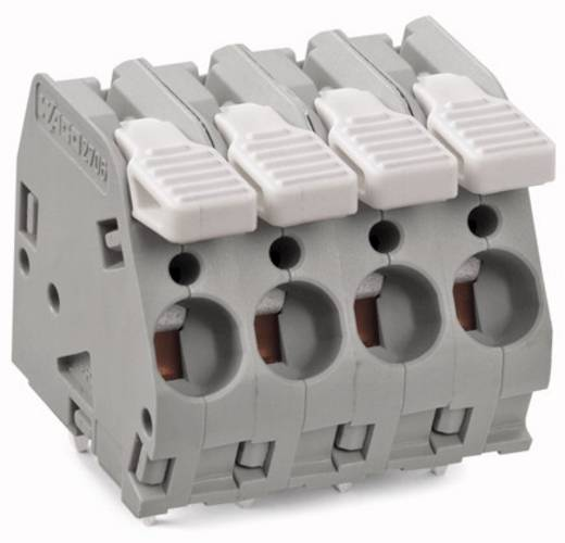 Federkraftklemmblock 6.00 mm² Polzahl 10 WAGO Schwarz 15 St.