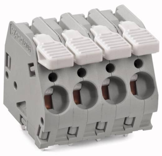 Federkraftklemmblock 6.00 mm² Polzahl 6 WAGO Lichtgrau 25 St.