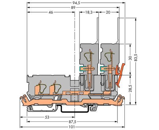Basisklemme 5 mm Zugfeder Belegung: L Grau WAGO 769-211 50 St.