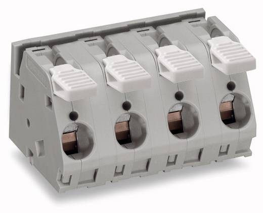 Federkraftklemmblock 6.00 mm² Polzahl 5 WAGO Grau 12 St.