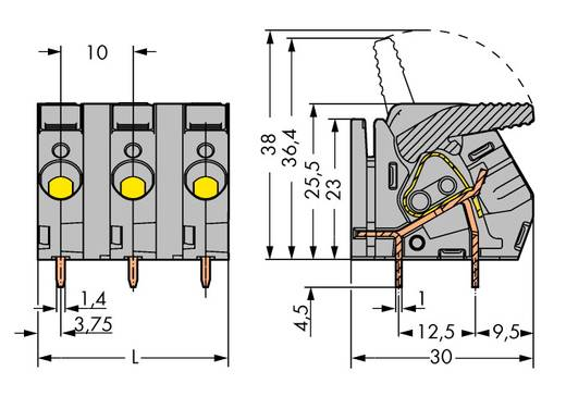 Federkraftklemmblock 6.00 mm² Polzahl 2 WAGO Grau 70 St.