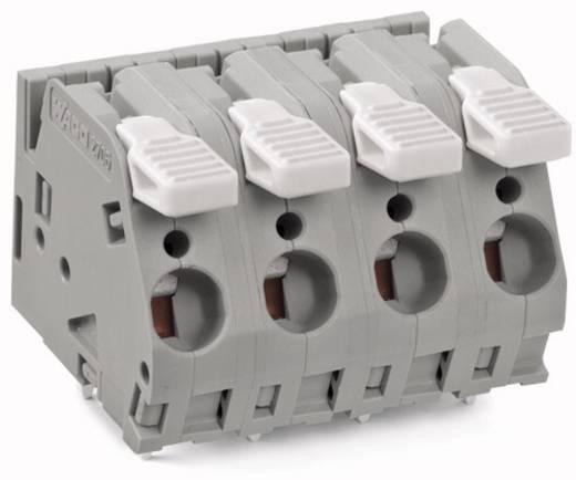 Federkraftklemmblock 6.00 mm² Polzahl 4 2706-254 WAGO Grau 30 St.