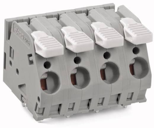 Federkraftklemmblock 6.00 mm² Polzahl 6 WAGO Grau 20 St.