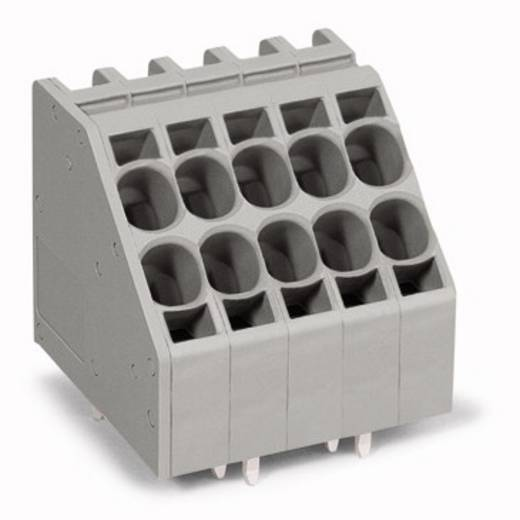Federkraftklemmblock 10.00 mm² Polzahl 9 WAGO Grau 12 St.