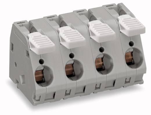 Federkraftklemmblock 6.00 mm² Polzahl 4 WAGO Grau 20 St.