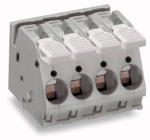 Federkraftklemmblock 6.00 mm² Polzahl 4 WAGO Grau 24 St.
