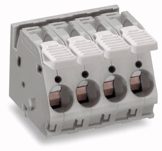 Federkraftklemmblock 6.00 mm² Polzahl 5 WAGO Grau 20 St.