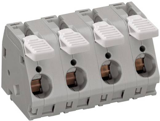 Federkraftklemmblock 6.00 mm² Polzahl 3 WAGO Grau 25 St.
