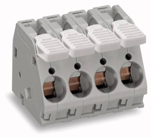 Federkraftklemmblock 6.00 mm² Polzahl 3 WAGO Grau 40 St.