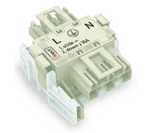 Netz-Adapter Netz-Stecker - Netz-Buchse Gesamtpolzahl: 3 Weiß WAGO 25 St.