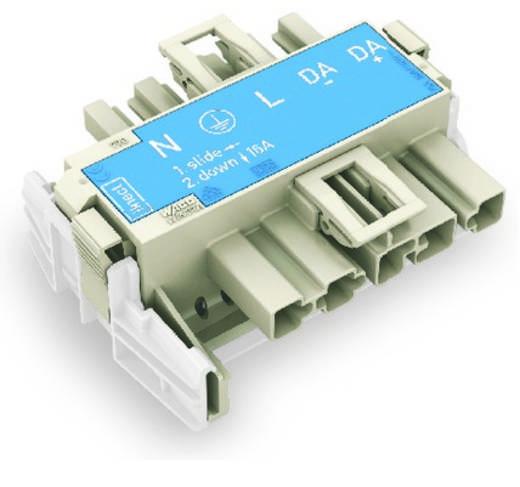 Netz-Adapter Netz-Stecker - Netz-Buchse Gesamtpolzahl: 5 Weiß WAGO 770-7105 20 St.