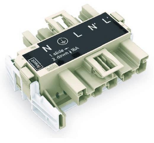 Netz-Adapter Netz-Stecker - Netz-Buchse Gesamtpolzahl: 5 Dunkel-Grau WAGO 20 St.
