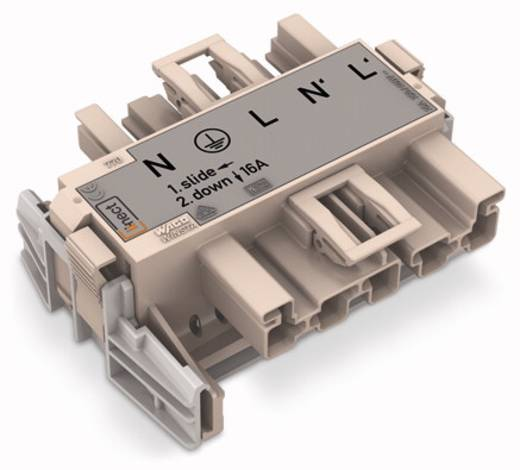 Netz-Adapter Netz-Stecker - Netz-Buchse Gesamtpolzahl: 5 Dunkel-Grau WAGO 770-7505 20 St.