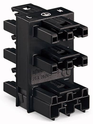 Netz-Verteiler Netz-Stecker - Netz-Buchse, Netz-Buchse, Netz-Buchse, Netz-Buchse, Netz-Buchse Gesamtpolzahl: 3 Weiß WAGO