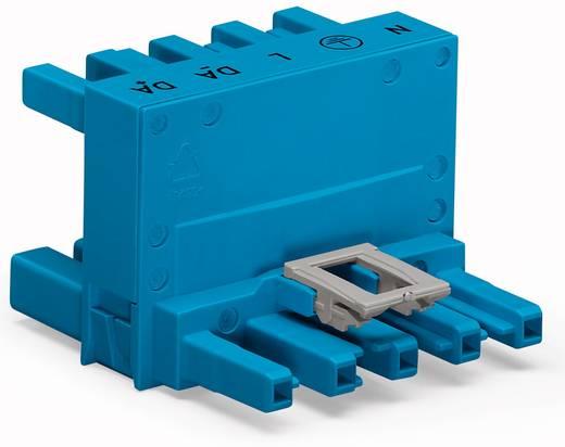 Netz-H-Verteiler Netz-Stecker - Netz-Buchse, Netz-Buchse Gesamtpolzahl: 5 Blau WAGO 25 St.