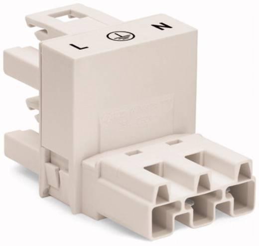 Netz-H-Verteiler Netz-Stecker - Netz-Buchse, Netz-Buchse Gesamtpolzahl: 3 Weiß WAGO 770-684 50 St.