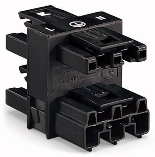 Netz-Verteiler Netz-Stecker - Netz-Buchse, Netz-Buchse, Netz-Buchse Gesamtpolzahl: 3 Rot WAGO 770-907 50 St.