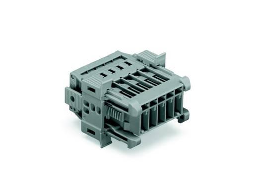 Buchsengehäuse-Kabel 769 Polzahl Gesamt 5 WAGO 769-605/006-000 Rastermaß: 5 mm 25 St.