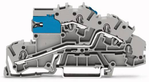 Installationsetagenklemme 5.20 mm Zugfeder Belegung: NT, L Grau WAGO 2003-7640 50 St.
