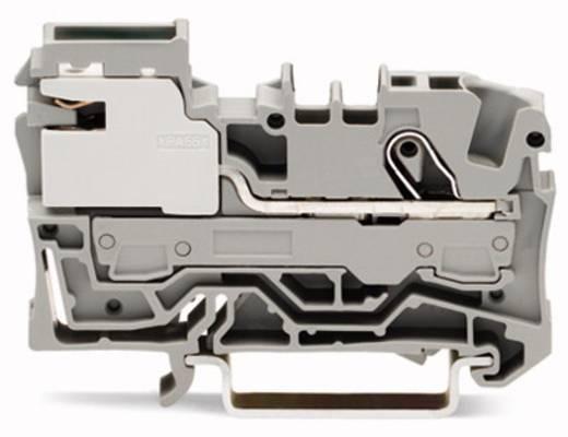 Potentialklemme 7.50 mm Zugfeder Grau WAGO 2006-7111 50 St.