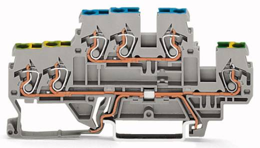 Doppelstock-Schutzleiterklemme 5 mm Zugfeder Belegung: PE, N Grau WAGO 870-535 50 St.