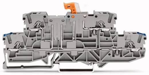 Doppelstock-Trennklemme 5.20 mm Zugfeder Belegung: N, L Grau WAGO 2002-2972 50 St.