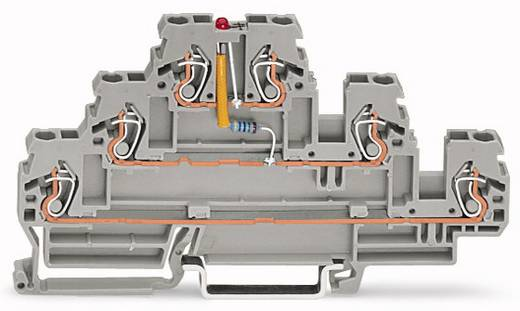 Dreistock-LED-Klemme 5 mm Zugfeder Belegung: L Grau WAGO 870-593/281-413 50 St.