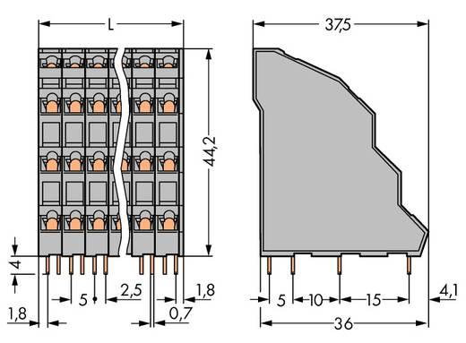 Federkraftklemmblock 2.50 mm² Polzahl 32 WAGO Grau 18 St.