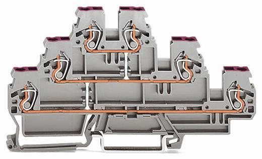 Dreistock-Durchgangsklemme 5 mm Zugfeder Belegung: L Grau WAGO 870-556 50 St.
