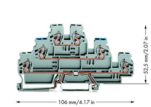 Dreistock-Schirmleiterklemme 5 mm Zugfeder Belegung: N, L Grau WAGO 870-558 50 St.