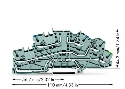 Installationsetagenklemme 5.20 mm Zugfeder Belegung: N, L, PE Grau WAGO 2003-6640 50 St.