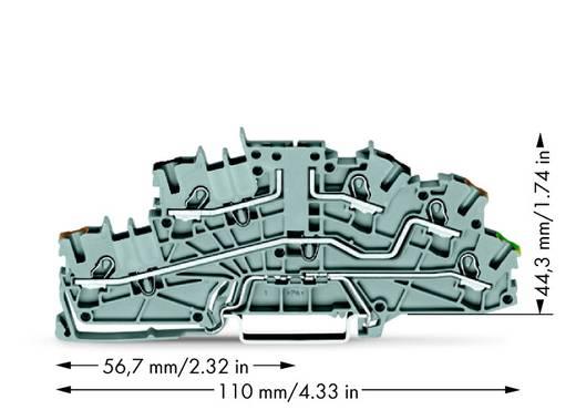 Installationsetagenklemme 5.20 mm Zugfeder Grau WAGO 2003-6643 50 St.