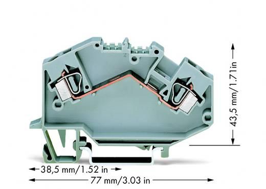 Durchgangsklemme 6 mm Zugfeder Belegung: L Grau WAGO 781-601 50 St.