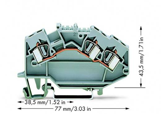 Durchgangsklemme 6 mm Zugfeder Belegung: L Grau WAGO 781-631 50 St.