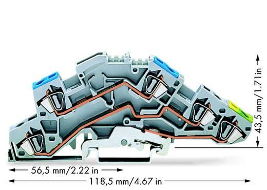 Installationsetagenklemme 6 mm Zugfeder Belegung: N, L, PE Grau WAGO 776-646 50 St.