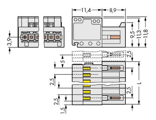 WAGO 733-202 Stiftgehäuse-Kabel 733 Polzahl Gesamt 2 Rastermaß: 2.50 mm 200 St.