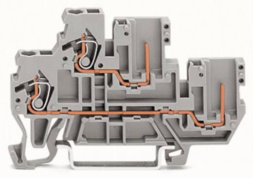 Doppelstock-Basisklemme 5 mm Zugfeder Belegung: L Grau WAGO 870-102 50 St.