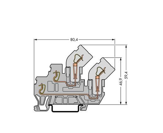 Doppelstock-Basisklemme 5 mm Zugfeder Belegung: L Grau WAGO 870-101 50 St.