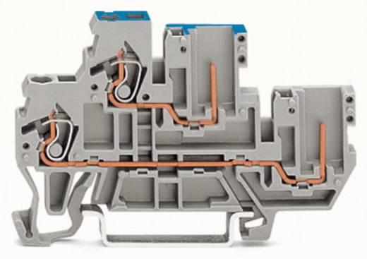Doppelstock-Basisklemme 5 mm Zugfeder Belegung: L Grau WAGO 870-103 50 St.