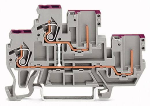 Doppelstock-Basisklemme 5 mm Zugfeder Belegung: N Grau WAGO 870-109 50 St.