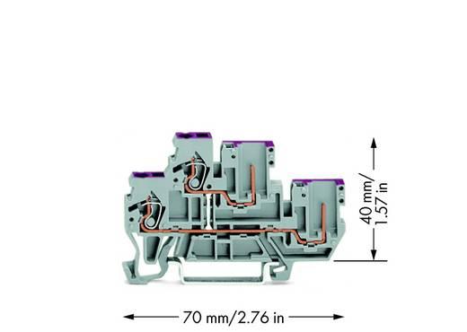 Doppelstock-Basisklemme 5 mm Zugfeder Belegung: L Grau WAGO 870-108 50 St.